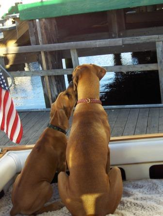 Kona and Rika boating-comp.JPG